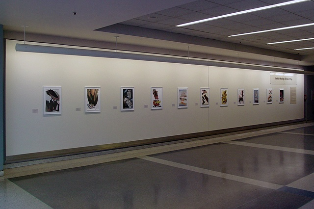 Installation at Philadelphia International Airport