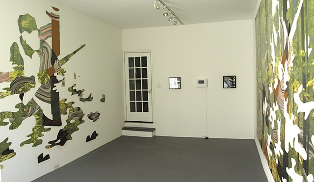 Installation Shot- Crypsis at Rebekah Templeton Gallery