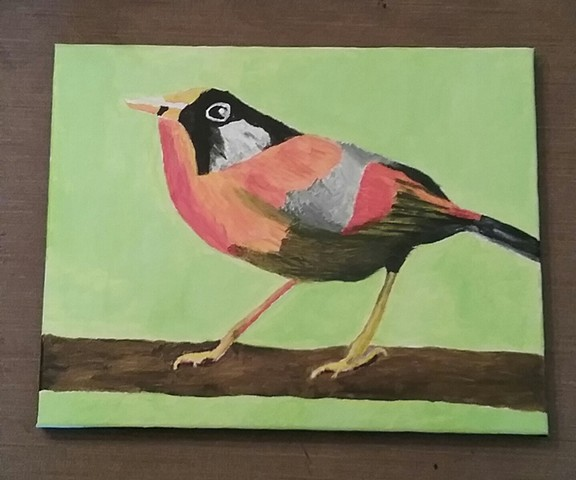 Acrylic painting of a Silver Eared Mesia bird by Christopher Stanton