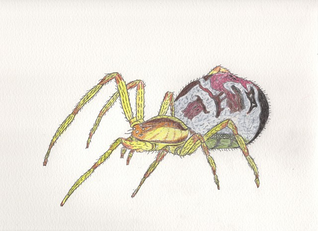 Drawing illustration of a Mothercare Spider by Christopher Stanton