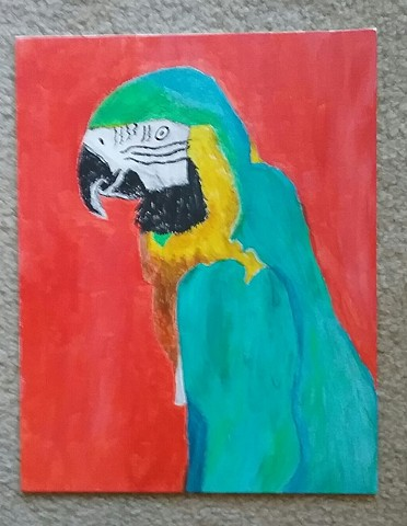 Painting of a Blue Macaw by Christopher Stanton
