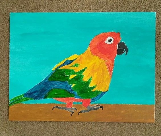 Painting of a Sun Parakeet by Christopher Stanton