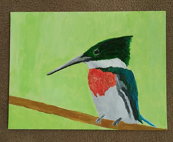 Painting of an Amazon Kingfisher by Christopher Stanton