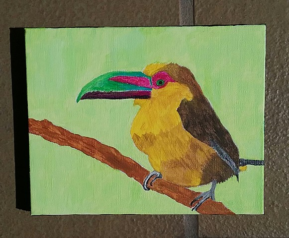 Acrylic painting of a saffron toucanet by Christopher Stanton