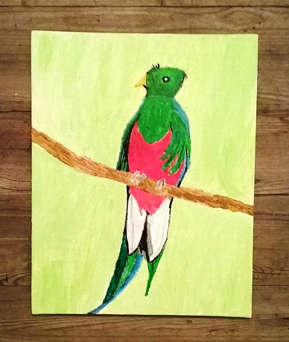 Painting of a Quetzal by Christopher Stanton