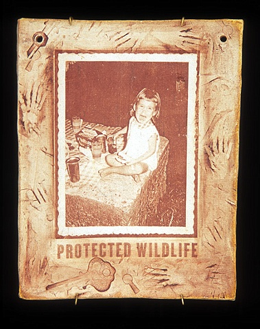 Protected Wildlife