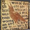 Blackbird Triptych #4