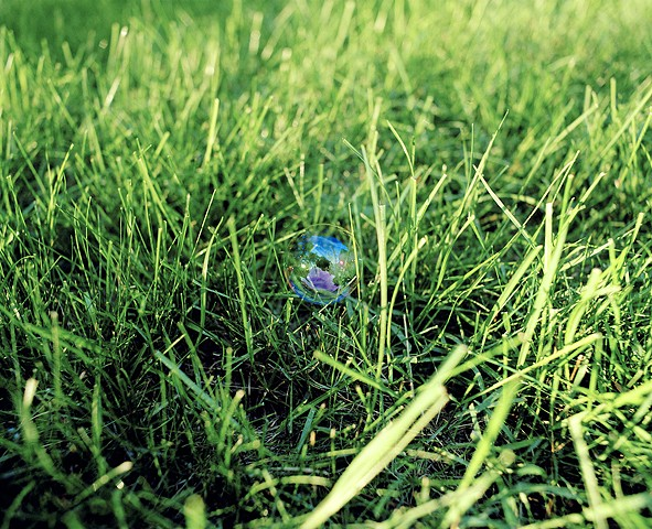 A Bubble Rests on the Grass