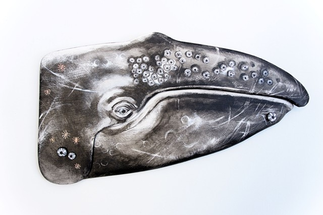 """Gray Whale, Mark 2"""