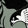 Peregrine Falcons  Hunted Passenger Pigeons  (Version Two)