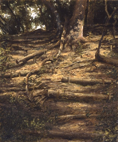 Forest Slope
