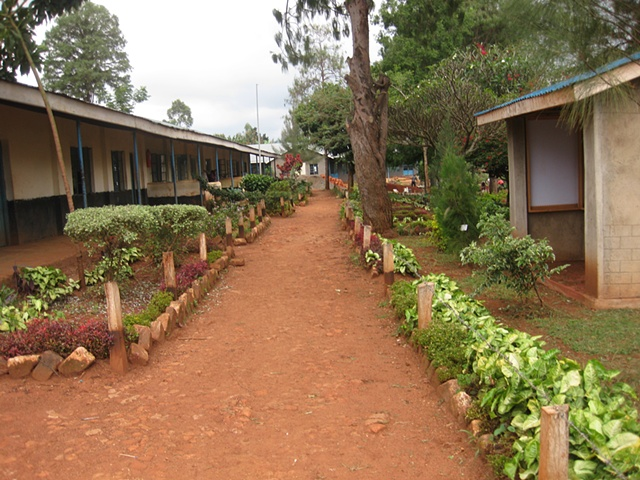 Secondary School Grounds
