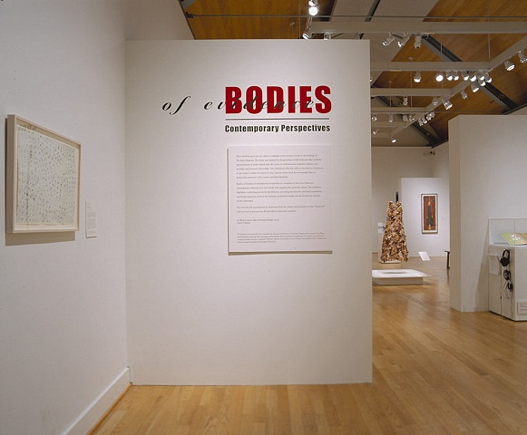 bodies of evidence:  contemporary perspectives
