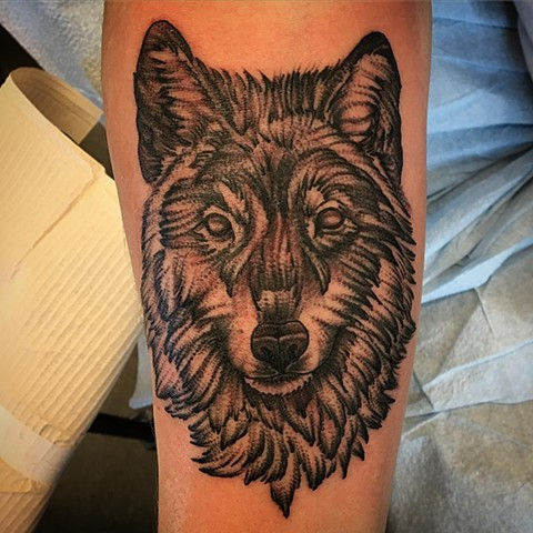 Wolf Tattoo By Dale Moostoos Black And Grey Crimson Empire Tattoo