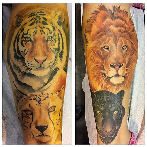 Wild Cats Tattoo By Chad Lavers Color Crimson Empire Tattoo