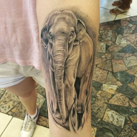 Elephant Tattoo By Sarah Michelle Black And Grey Black Gold Tattoo Co