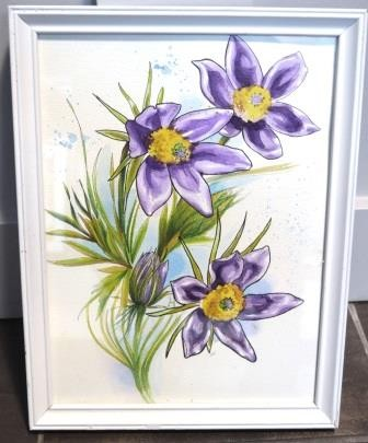 Pulsatilla flowers -watercolor