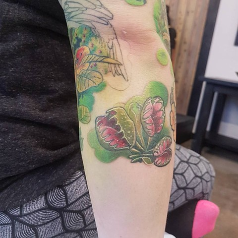 Venus Fly Trap Tattoo By Kevin Sherritt Color Crimson Empire Tattoo