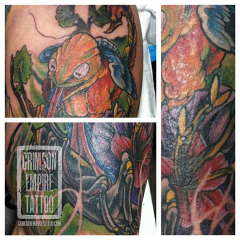 Insect sleeve on arm by Jared Phair. Follow Jared @jroctizzle