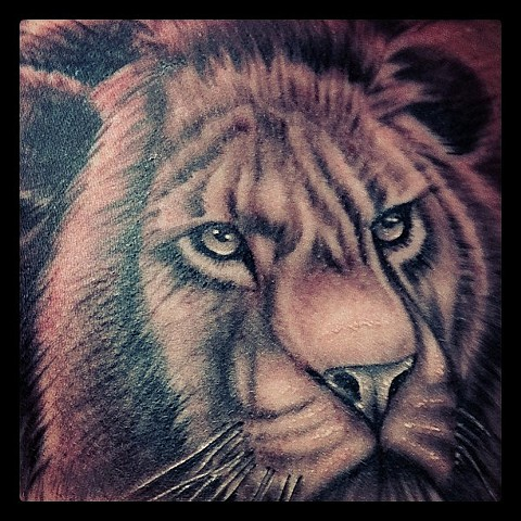 Lion Portrait Tattoo By Kyiel Cholik Black And Grey Crimson Empire Tattoo