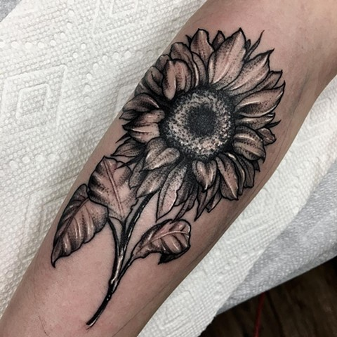 Sunflower Tattoo By Romeo Ostiguy Black And Grey Black Gold Tattoo Co