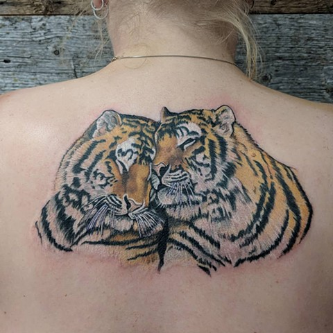 Snuggling Tigers Tattoo By Sheila Anderson Color Crimson Empire Tattoo