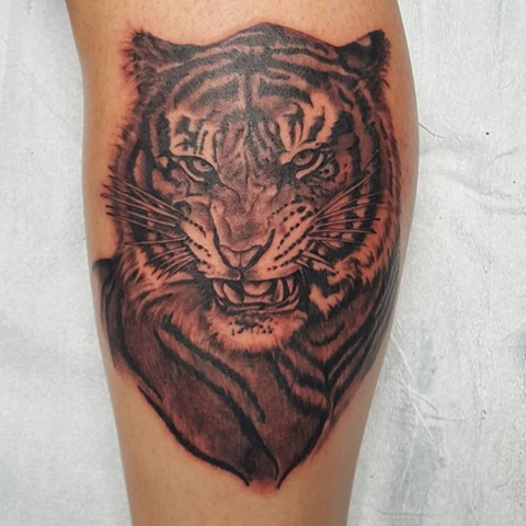 Tiger Portrait Tattoo By Sheila Anderson Black And Grey Crimson Empire Tattoo