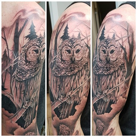 Owl Tattoo By Kevin Sherritt Black And Grey Crimson Empire Tattoo