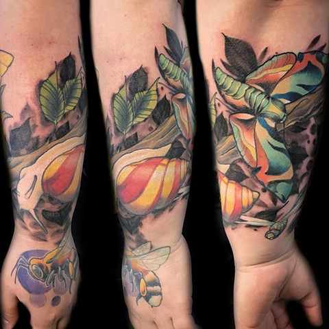 Snail And Butterfly Tattoo By Landon Wierenga Color Crimson Empire Tattoo