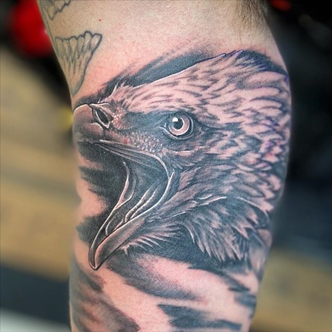 Eagle Portrait Tattoo by Dale Moostoos Black and Grey Crimson Empire Tattoo