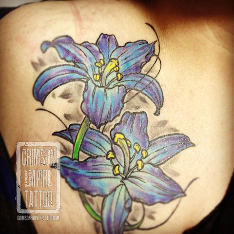 Lily on chest by Chad Clothier. Follow Chad @clobot