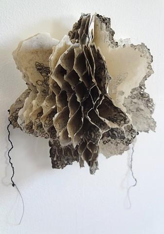 Pineapple Honeycomb (honeycomb)