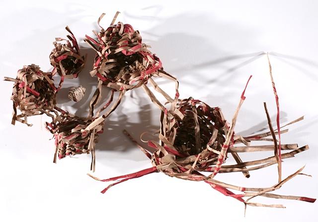Nesting Nests (Open)