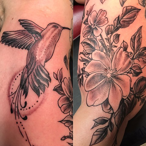 Hummingbird & flowers