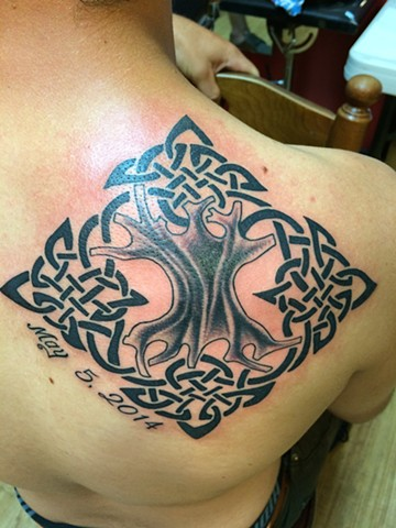 Celtic tree of life !