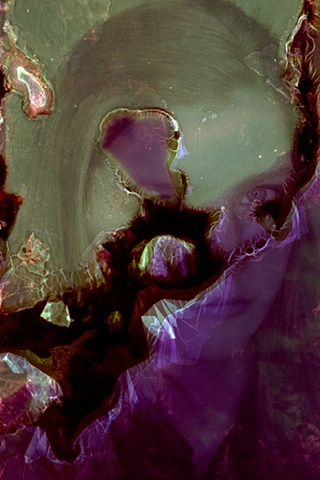 bacteria film portrait identity urizen freaza pigment layers destruction series negative slide trascience fragility