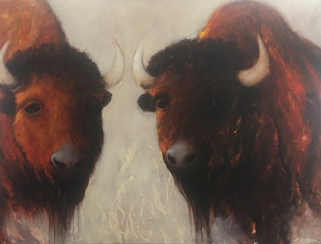 "Twin Buffalow 40""X 30"""