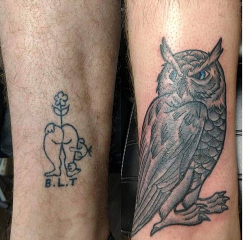 owl cover up