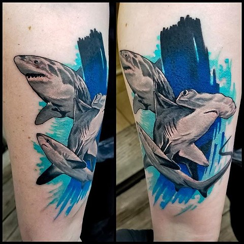 Shark tattoo by Chris Lowe at naked art tattoos in Odenton Maryland