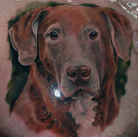 dog portrait tattoo by chris lowe at naked art tattoos