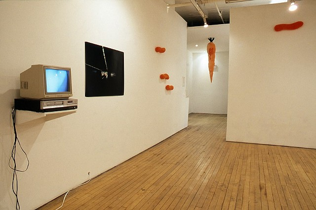 Jennifer McMackon, untitled photograph and video, Pseudonyms and Similarities, Group Show Curated by Natalie Olanick at Mercer Union, Toronto, 1997
