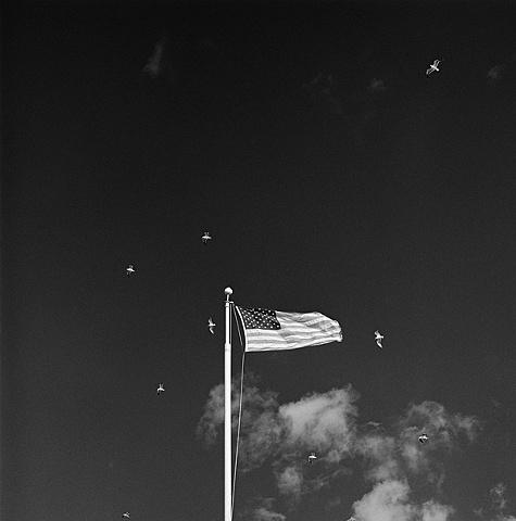 """ American Flag """