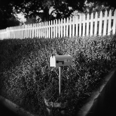 """"""" Mailbox and Ivy """""""