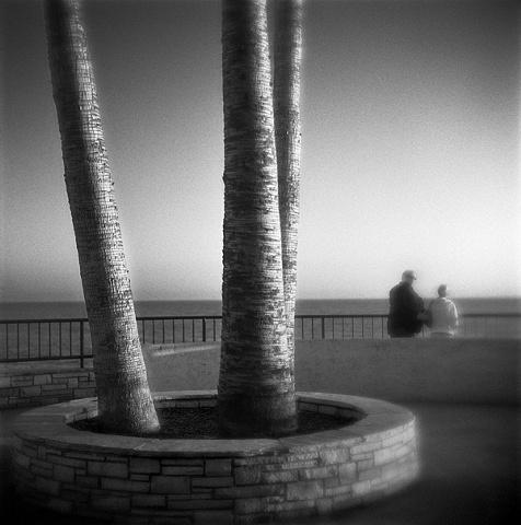 """ Scenic View """