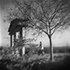 """ Tree and Memorial """