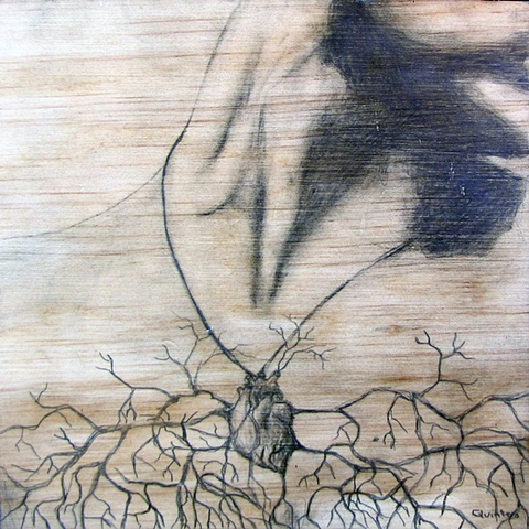 botanical organic branches erotic contemporary figure drawing pencil on wood