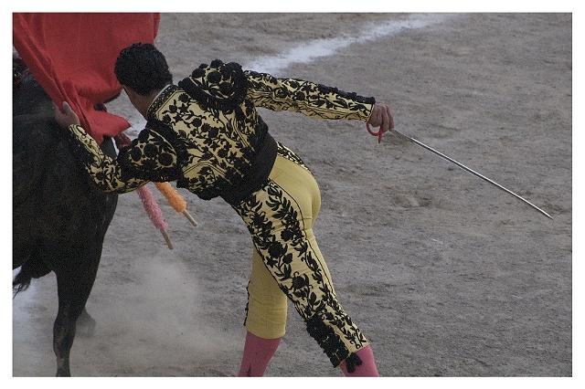 Bullfight #1