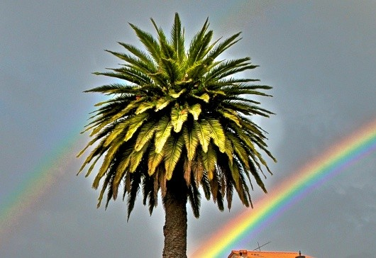 rainbow, Otavalo, Ecuador