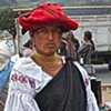 Dressed for Market #2