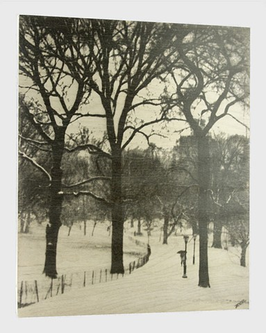 Winter in Central Park.